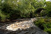 Uralte Steinbrücke über den Fluss Livet nahe Glenlivet, Aberdeenshire, Schottland