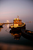Fishing boat in the harbour at night, Trieste, Friuli-Venezia Giulia, Italy