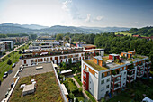 Residential houses with grass roofs and solar roofs, Freiburg im Breisgau, Baden-Wurttemberg, Germany