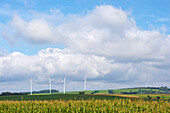 Wind energy near Seinsfeld, Eifel, Rhineland-Palatinate, Germany, Europe