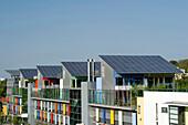 Houses with solar architecture, Vauban quarter, Freiburg im Breisgau, Baden-Wuerttemberg, Germany, Europe
