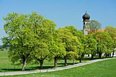All Saints Church, Warngau, Upper Bavaria, Bavaria, Germany