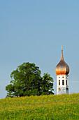 Blick über eine Blumenwiese auf einen Kirchturm, Oberbayern, Bayern, Deutschland