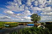 Küstenlandschaft und Meeresarm mit Fischerbooten, Zempin, Achterwasser, Usedom, Mecklenburg-Vorpommern, Deutschland, Europa