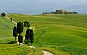 Buildings in landscape of hills, Crete Senesi, Tuscany, Italy