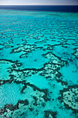 Coral around Heron Island from above, Great Barrier Reef Marine Park, UNESCO World Heritage Site, Queensland, Australia
