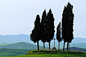 Wegkreuz mit Zypressen und Hügellandschaft im Hintergrund, Val d´Orcia, UNESCO Weltkulturerbe, Val d´Orcia, Toskana, Italien