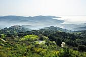 Hills and coastline of island of Elba, view to viallage of San Ilario in Campo and the bay of Marina di Campo, island of Elba, Mediterranean, Tuskany, Italy