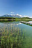 Wooden landing stage leading into lake Turnersee, Karawanken range in the background, lake Turnersee, Carinthia, Austria, Europe