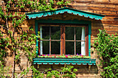 Window at farmhouse decorated with flowers and espalier tree, Kitzbuehel, Tyrol, Austria, Europe