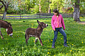Girl 11 years with donkey foal, Bavaria, Germany