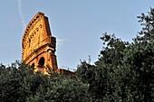 Partial view of the Coliseum, Rome