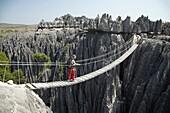 Tsingy de Bemaraha, Parque Nacional de los Tsingy de Bemaraha, Patrimonio de la Humanidad de la UNESCO, Mahajanga, Madagascar