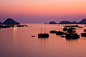Vietnam, Northern Vietnam, Halong Bay The pink sunset afterglow at dusk over Cat Ba harbour on Cat Ba Island