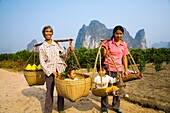 China, Guangxi Zhuang Autonomous Region, Yangshuo County Two rural farm workers carry fruit and their children in hand woven baskets along a rural road running through an agriculture landscape dominated by the Karst peaks of Yangshuo County