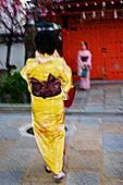 NR, Geon district, Kyoto old quarter, kimono dressed women taking photo
