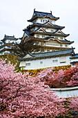 NR Himeji Castle, Built 1580, Japans most magnificent castle in original condition