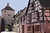 Turckheim, Alsace, Haut-Rhin, France, Europe Gateway tower and historic buildings in picturesque fortified medieval village on the Alsatian wine route