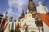 Wat Yai Chaya Mongkol, Ayuthaya, Thailand