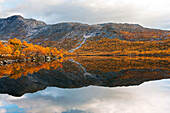 Rocky landscape with birch trees at a lake north of the arctic circle, Saltdal, Junkerdalen national park, trekking tour in Autumn, Fjell, Lonsdal, close to Mo i Rana, Nordland, Norway, Scandinavia, Europe