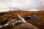 Wooden bridge over a river in a rocky landscape with birch trees, north of the arctic circle, Saltdal, Junkerdalen national park, trekking tour in Autumn, Fjell, Lonsdal, near to Mo i Rana, Nordland, Norway, Scandinavia, Europe