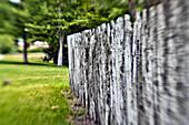 Rustic Fence, Louisiana, US