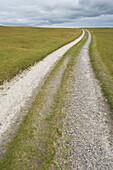 Path Across a Countryside Grassland, Ross-shire, Scotland, UK