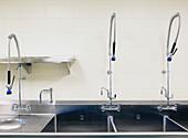 Large Industrial Sinks, Bradenton, Florida, United States