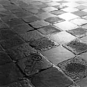 Stone floor, b&w