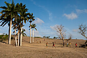 Boys playing baseball on a hillside with palm trees, Pilon, Granma, Cuba