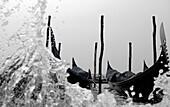 Gondolas, water spray, Venice, Italy