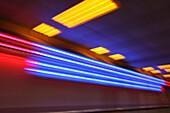 Neon art, Munich airpport, Terminal 1, Munich, Bavaria, Germany