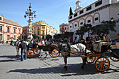 Horse-drawn carriage, Plaza del Triunfo, Seville, Andalusia, Spain