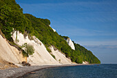 View towards Koenigstuhl and the chalk cliffs, Jasmund National Park, Ruegen island, Baltic Sea, Mecklenburg-West Pomerania, Germany