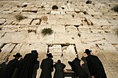 Israël, Jérusalem, Ultra-orthodox Jewish men pray at the Western Wall in the Old City of Jerusalem