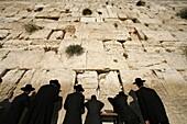Israël, Jérusalem, Ultra-orthodox Jewish men pray at the Western Wall in the Old City of Jerusalem