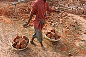 Inde, Worker in a West Bengal brick factory