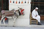 Qatar, Old Souq  or souq Waqif. Doha