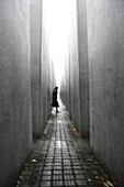 Allemagne, Berlin, Berlin holocaust memorial