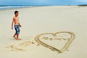 France, Aquitaine, Gironde, Bassin d'Arcachon, la Salie beach, boy