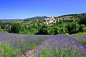 France, Provence, Vaucluse, Aurel, general view