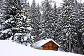 France, Rhone-Alpes, Haute Savoie, Alps, chalet in pine forest in winter