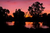 Yellow Water at sunset, South Alligator River floodplain, Kakadu National Park,  Northern Territory, Australia