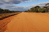 Outback track, New South Wales, Australia