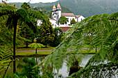Azores, S. Miguel island, Furnas, Terra Nostra garden
