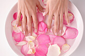 Woman, hands in a bowl with rose petals and water