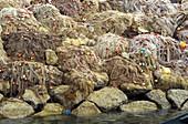 Fishing Nets Drying on Rocks, Agadir, Morocco