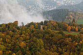 Aerial view of Dronke tower amidst autumnal trees and rising fog, rural district of Rhineland Palatinate, Germany, Europe
