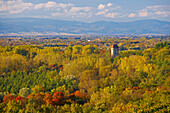 View over forest at Sponeck castle, Vogesen, Vosges, Kaiserstuhl, Baden Wuerttemberg, Germany, Europe
