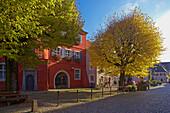 Burkheim, Historic city with town-hall, Kaiserstuhl, Baden Wuerttemberg, Germany, Europe